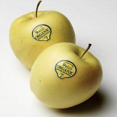 لیبل میوه